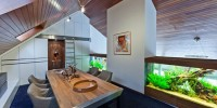 Villa with Aquarium by Centric Design Group 2