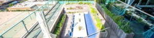 Repurposed Rooftop Pool Farm 00004