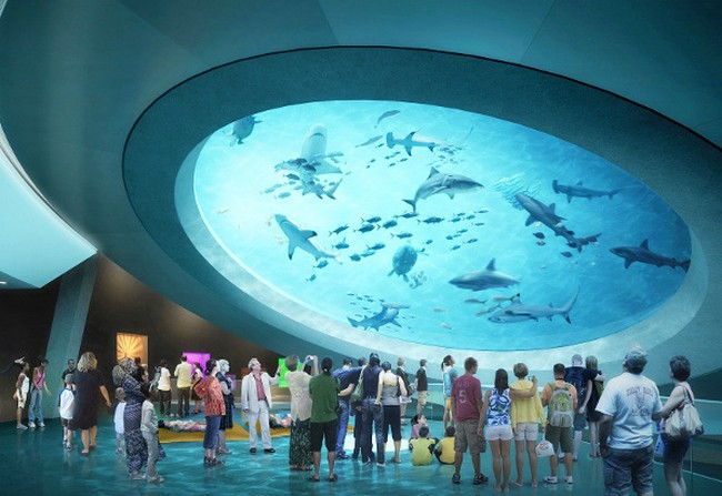 Patricia and philip frost museum of science by grimshaw for Fish store miami
